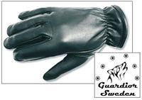 Visiterings handskar