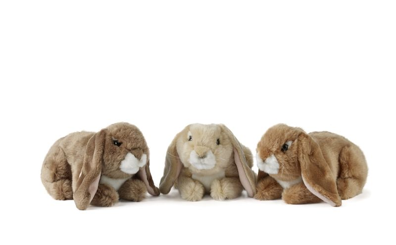 Lop Eared Rabbits 3 Assorted