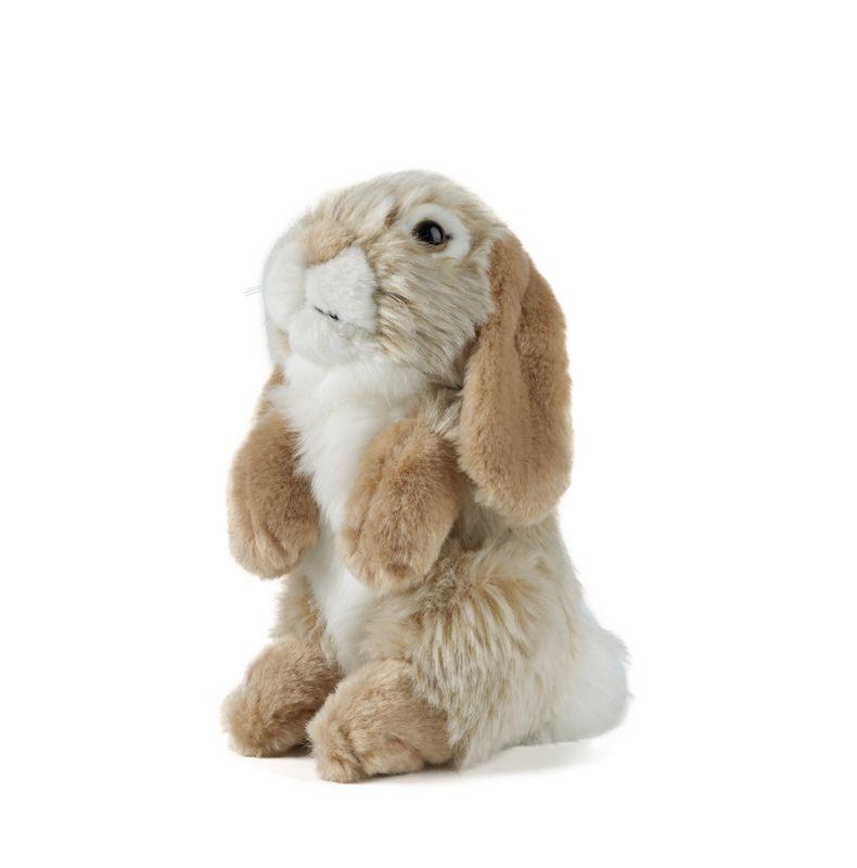 Brown Sitting Lop Eared Rabbit
