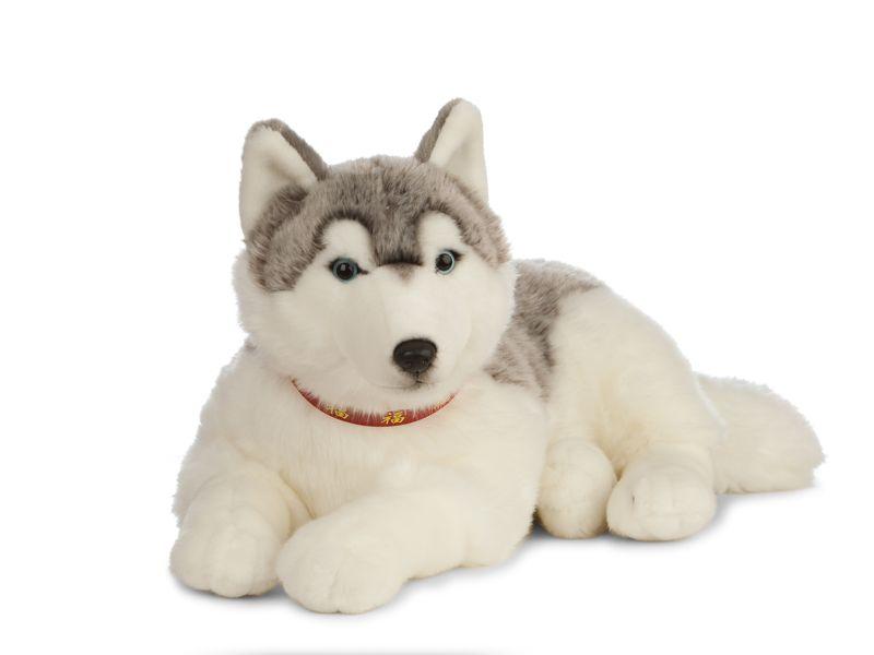 Giant Husky Dog