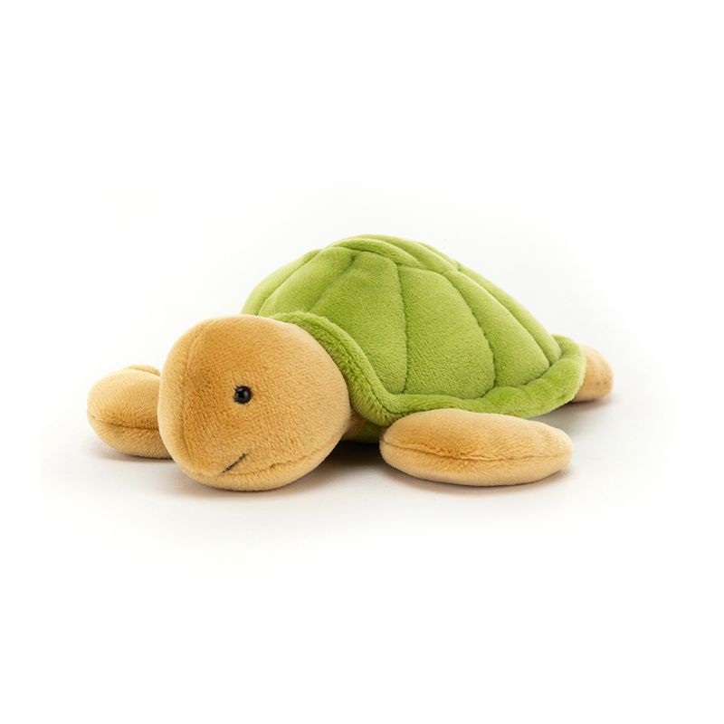 CeeCee Turtle Little