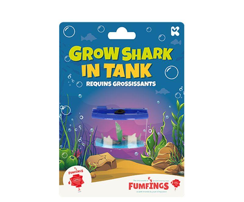 Growing Sharks in Tank