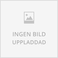 LED Lampa Normal 1W E27 Färgade