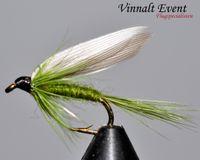 Olive Dun stl. 12