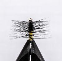 Super pupa Black & Yellow