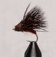 Streaking Caddis (short shank) Dark Brown