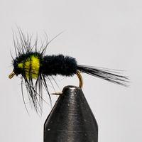Montana Keltainen (mini) koko 12