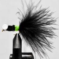 Booby Musta-Chartreu koko 8