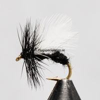 Ant (black ant wings) size 12