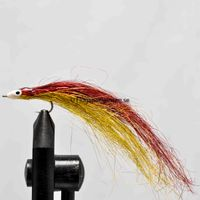 Fish Red size 6