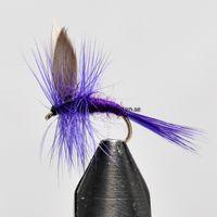 Deep purple Miller