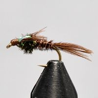 Pheasant Tail Flash Back Koko 14
