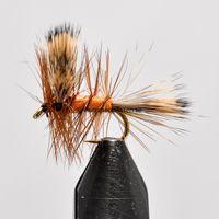 kolzer firefly