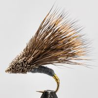 Streaking Caddis gold tag size 10
