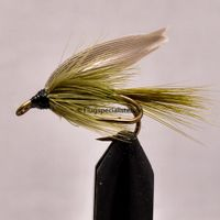 Olive Dun Stl. 8