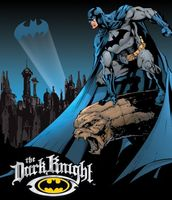 Batman The Dark Knight Tin Sign