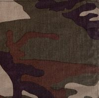 Militär Camouflage färg