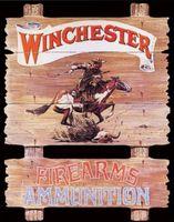 Winchester Express Rider