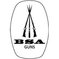 BSA Guns