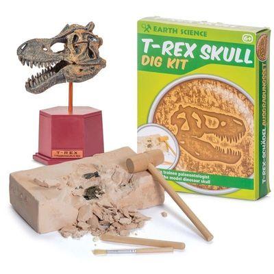 T-Rex kranium utgrävningskit