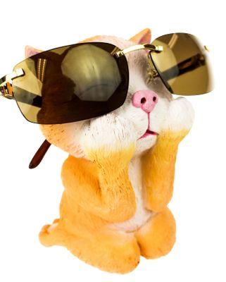 Katt Glasögonhållare