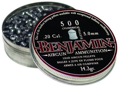Benjamin .20 Cal Cylinder Pellets
